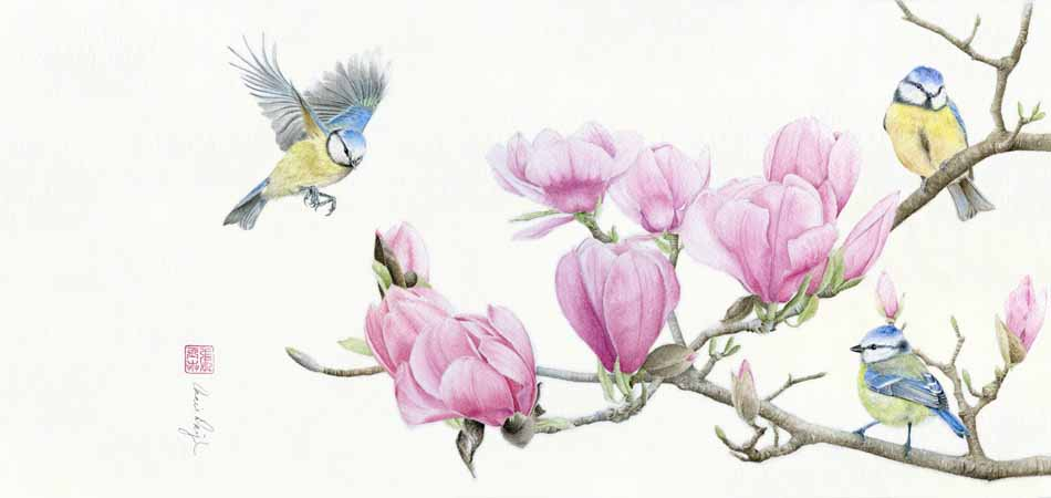 """Blue Tit Birds and Magnolia"" watercolor 9 x 16, 2017"